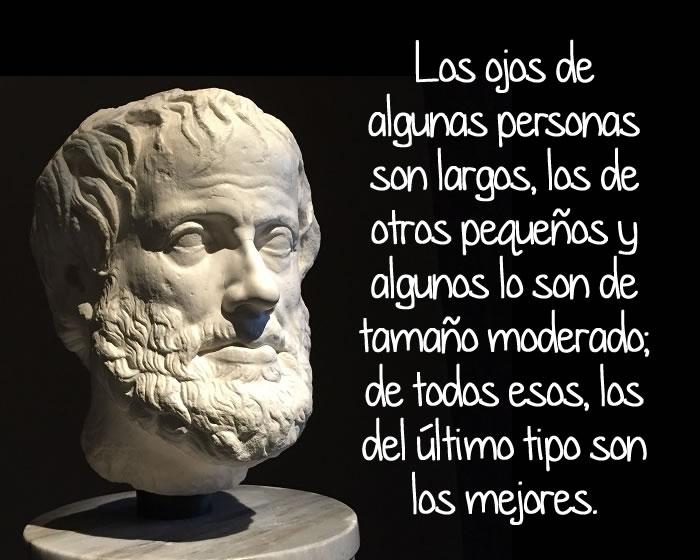 Frases De Aristóteles: Frases Célebres De Aristóteles Y Su Biografía