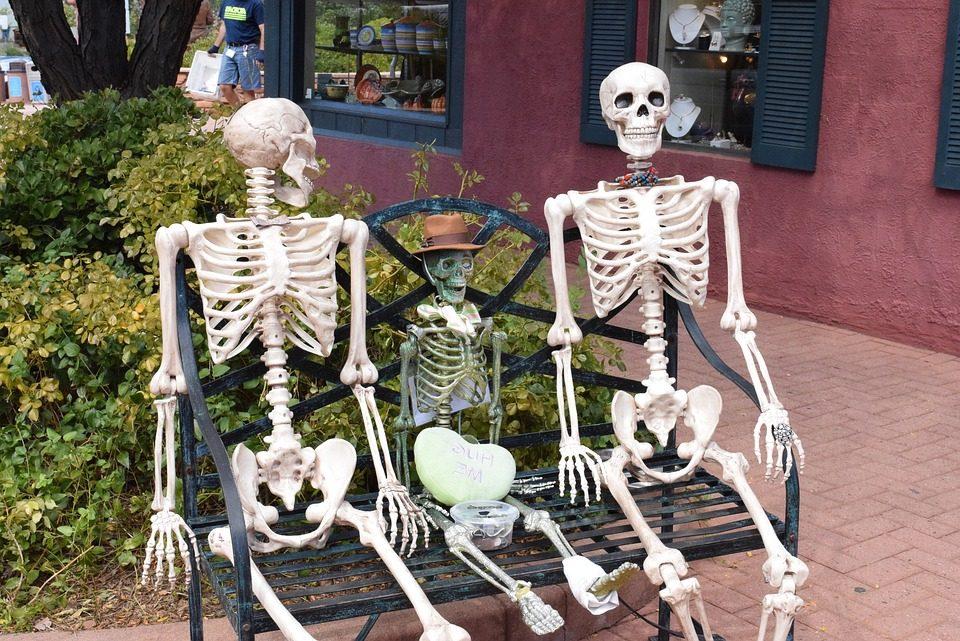 ¿Cuántos huesos tiene el cuerpo humano y cuáles son?