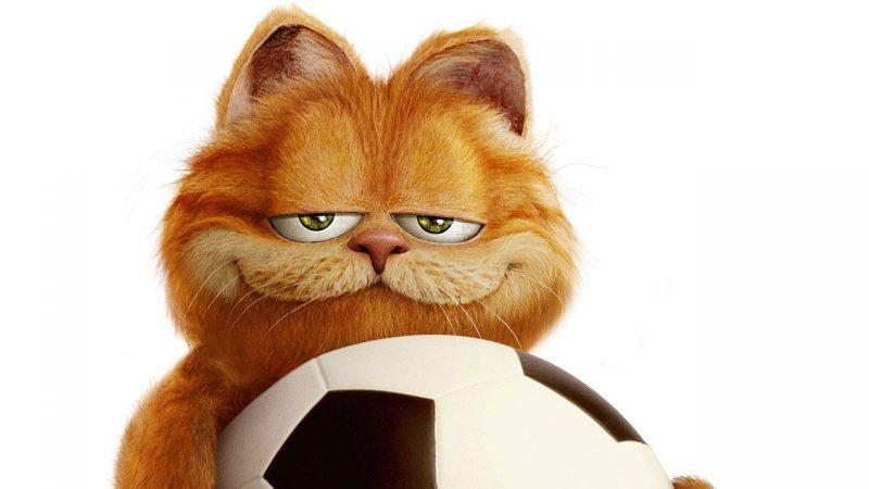 ¿De que raza de gatos es Garfield?