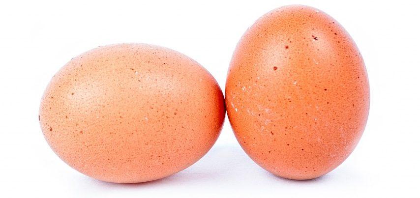 ¿Como saber si un huevo es fresco?