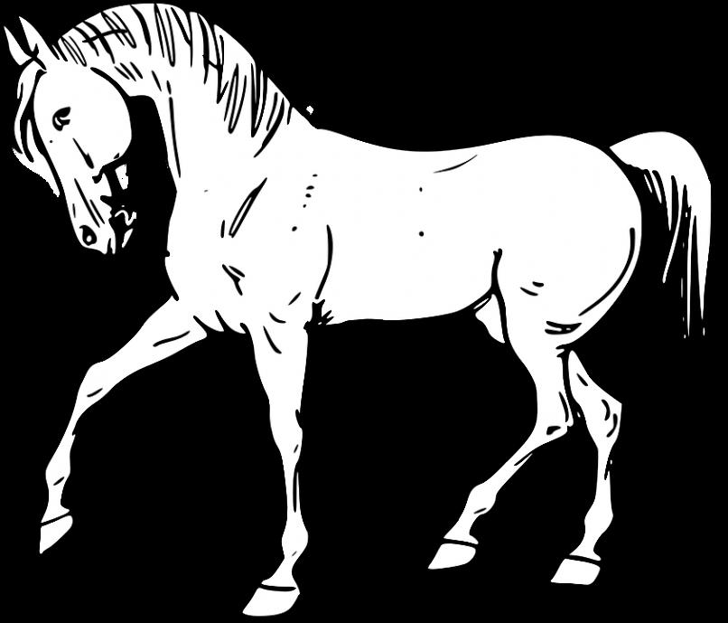 Un bonito caballo para pintar